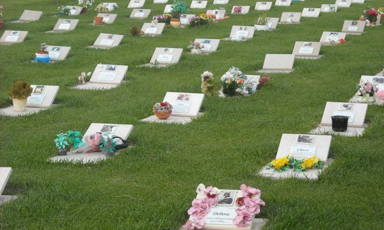 Onoranze funebri per animali domestici Sedriano